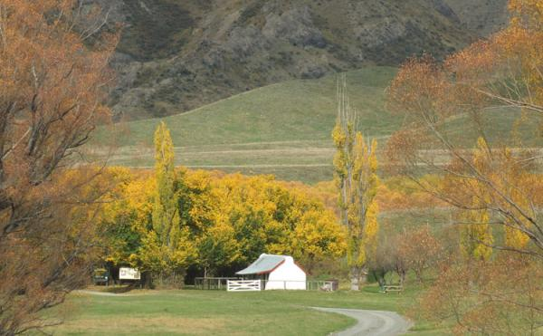 Molesworth Tours